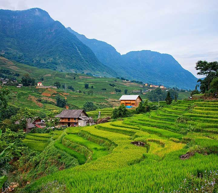 7 days trek through Hoang Lien National Park to Lao Cai